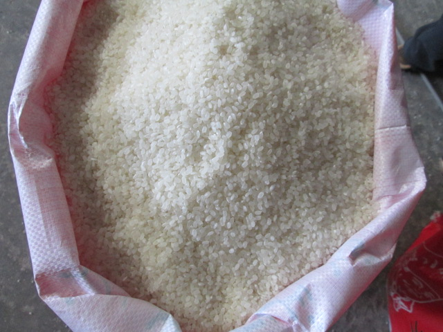 SHORT GRAIN RICE 5% BROKEN
