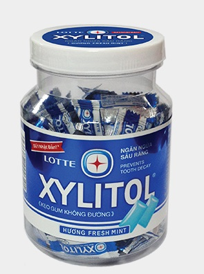 Lotte Gum Xylitol Cool Jar 290gr